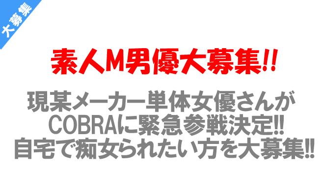 現某メーカー単体のあの女優さんがCOBRA参戦決定! 素人M男優緊急大募集!!