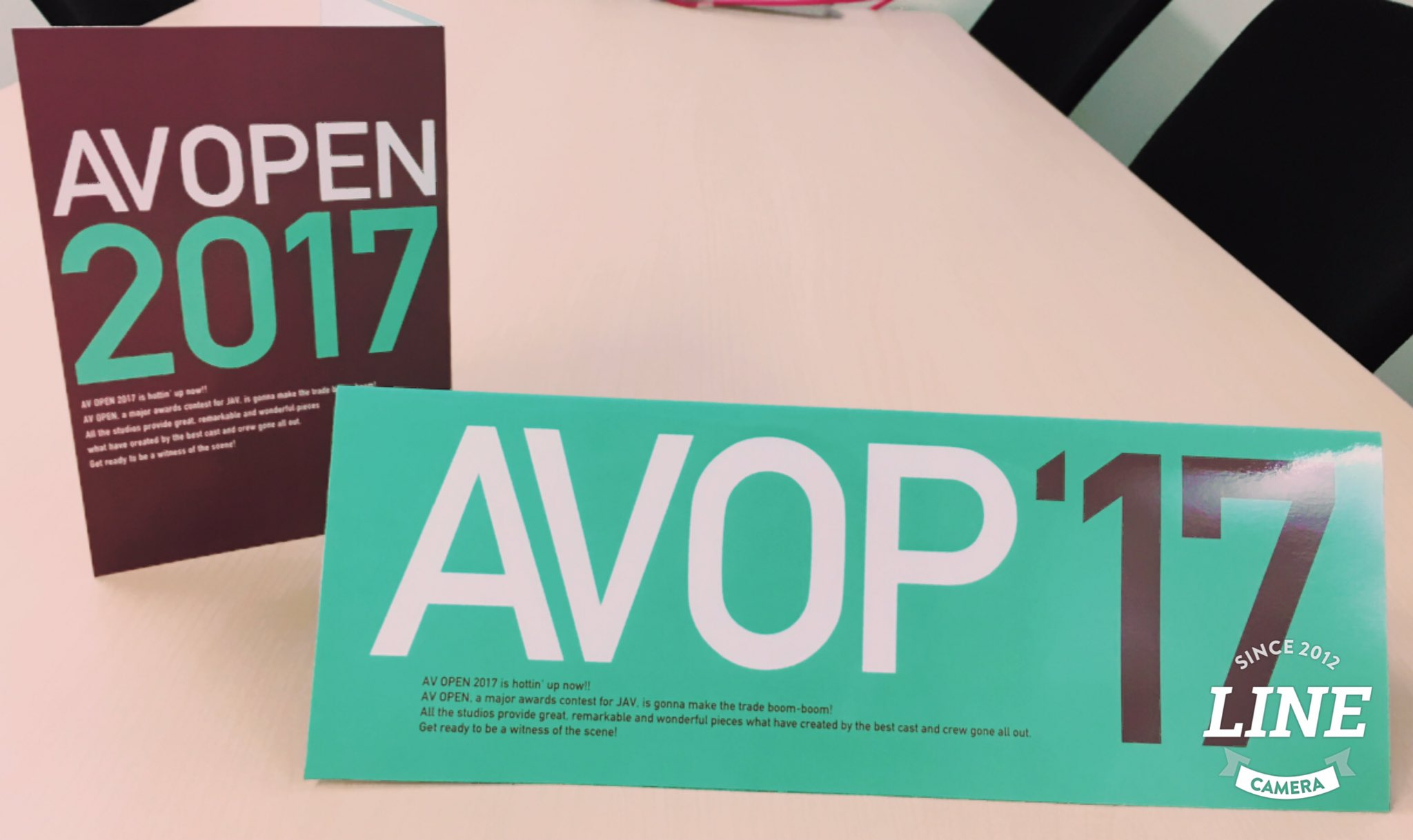 AVOPEN2017イメージガール