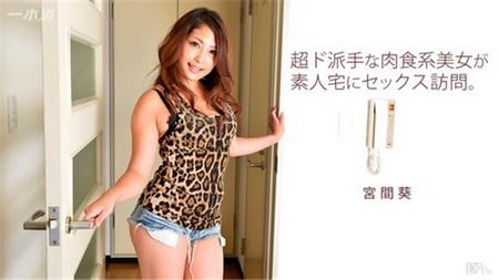 1pondo-061517_540_poster[1]