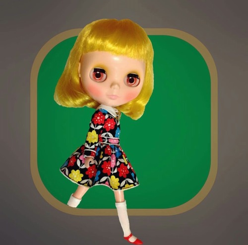 _picnic_さま 01-500