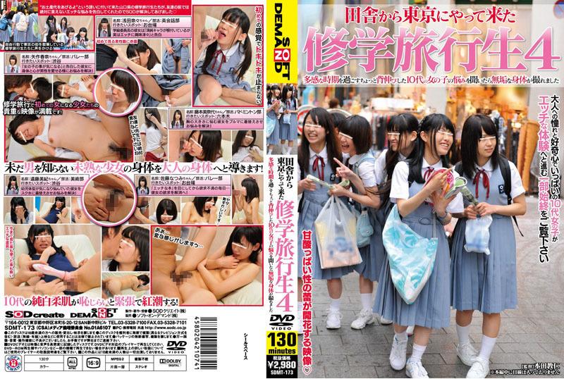 田舎から東京にやって来た 修学旅行生4 多感な時期を過ごすちょっと背伸びした10代の女の子の悩みを聞いたら無垢な身体が撮れました