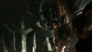 Tomb Raider (10)