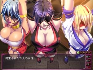 Chichi Ninja Revolution (2)