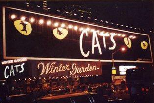 NY CATS