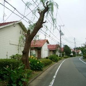 阿佐ヶ谷住宅RIMG3892 (299x300)