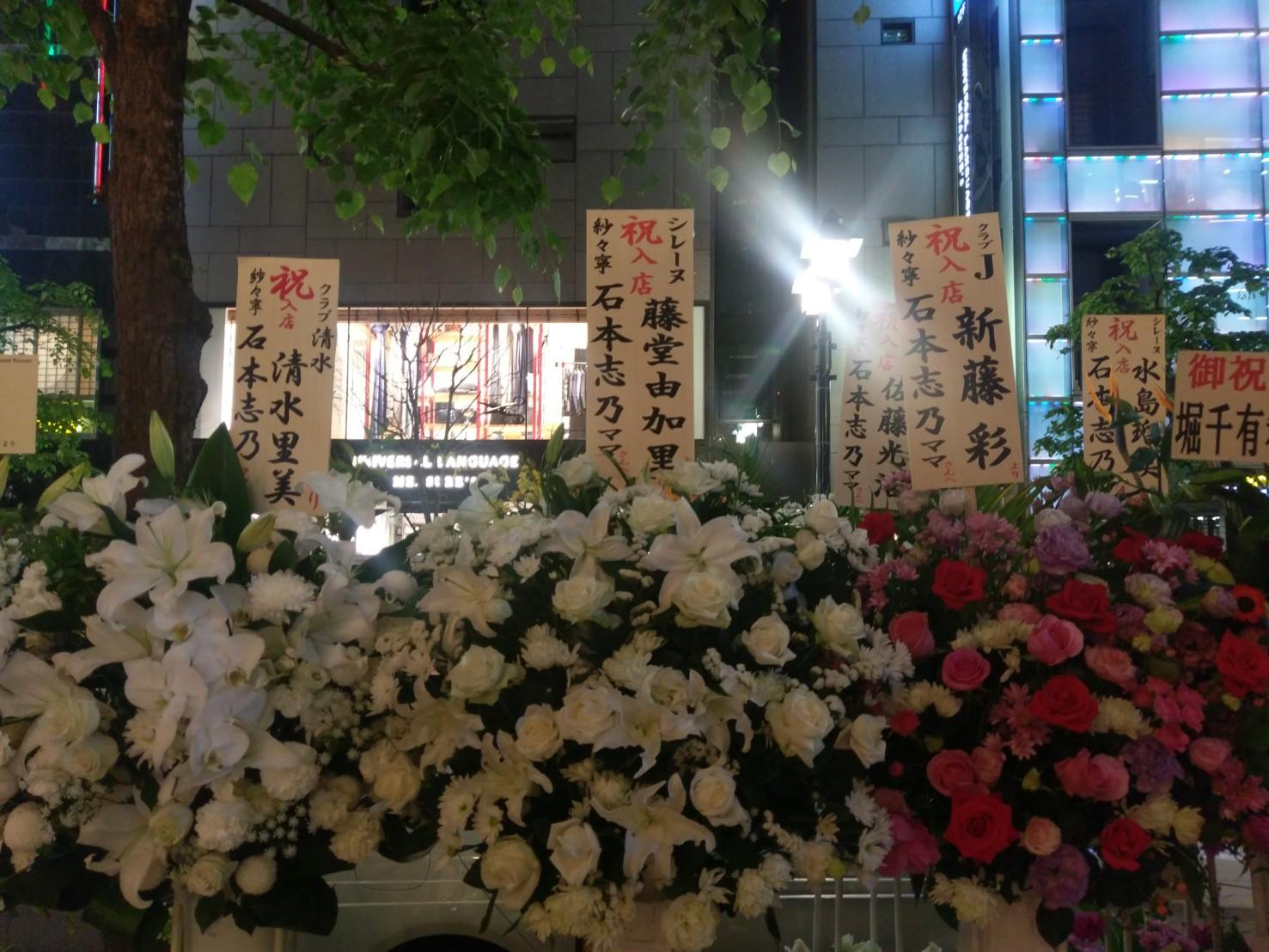銀座7丁目の高級クラブ「紗々寧」に石本志乃ママさんが入店