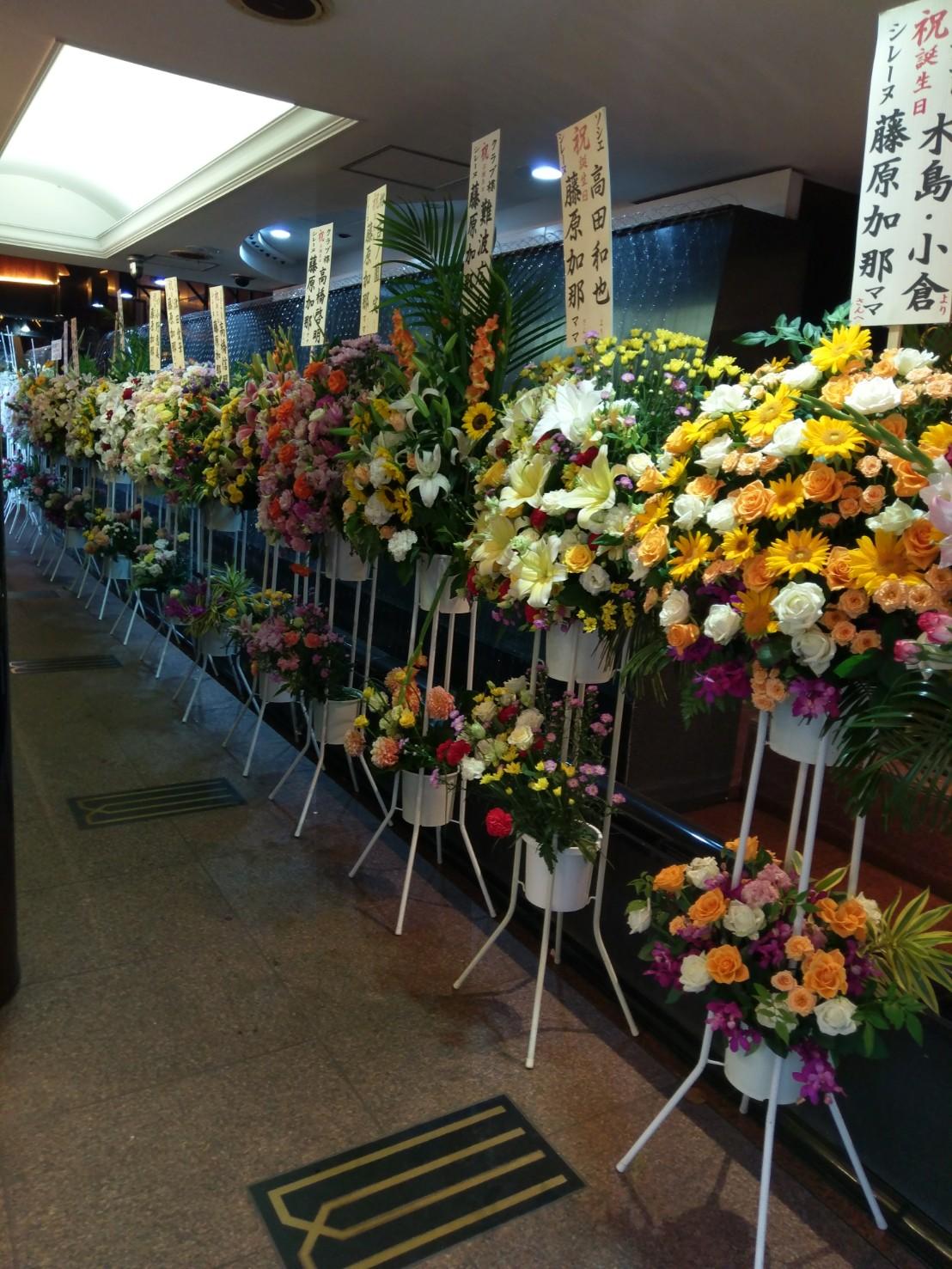 銀座8丁目の高級クラブ「シレーヌ」の藤原加那ママさん、お誕生日おめでとうございます!