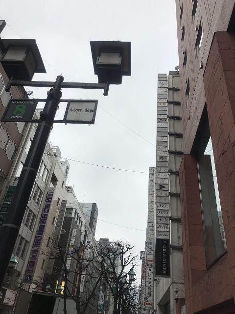 2月23日の銀座・新橋お天気情報