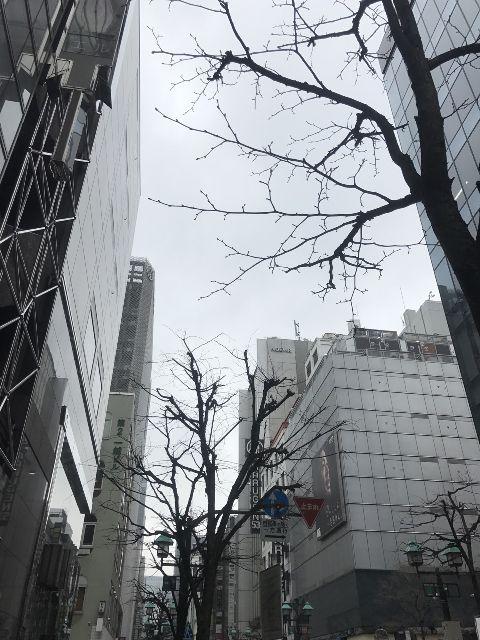 3月2日の銀座・新橋お天気情報