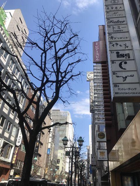 3月17日の銀座・新橋お天気情報