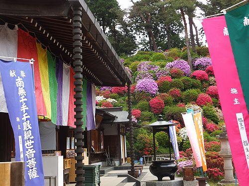 20170509塩船観音寺2