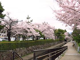 shizuku_toshishita131.jpg
