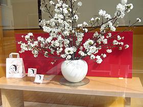 shizuku_toshishita192.jpg