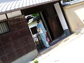 shizuku_toshishita281.jpg