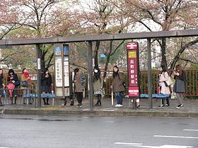 shizuku_toshishita351.jpg