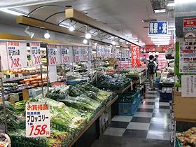 shizuku_toshishita501.jpg