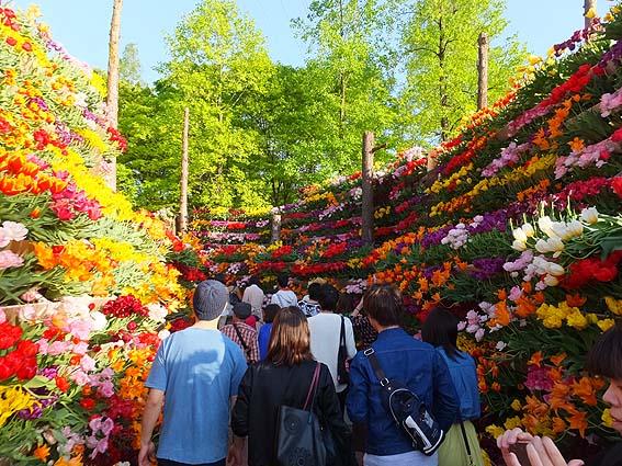 「花の大谷」