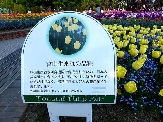 「富山生まれの品種」コーナー