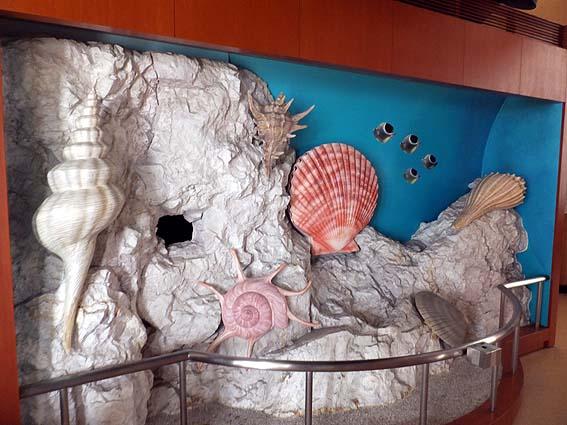 貝のオブジェ