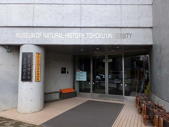理学部自然史標本館入り口