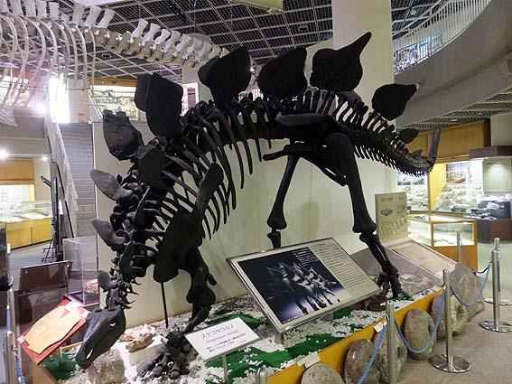 ステゴサウルス・ステノプス
