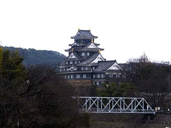 岡山神社より望む岡山城