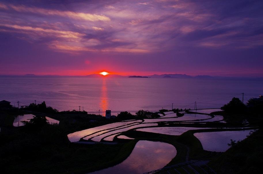 棚田 夕陽