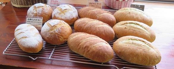 パン天然酵母