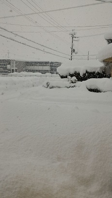 20125積雪