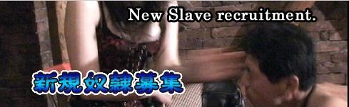 ミストレスランド マオ女王様 マゾ男 BDSM 鞭 アナル 顔面騎乗