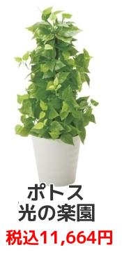 光の楽園【光触媒/人工観葉植物】ポールライムポトス