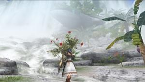 彩りの滝3