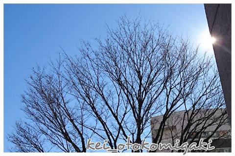 twitter1月下旬03
