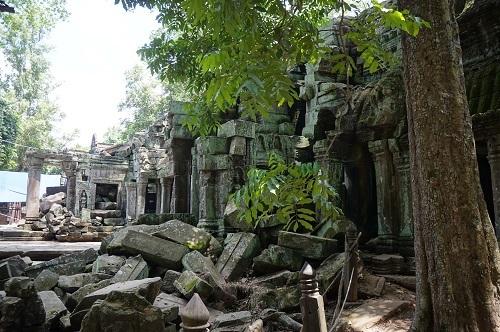 カンボジア④20170618(タ プローム) (12)