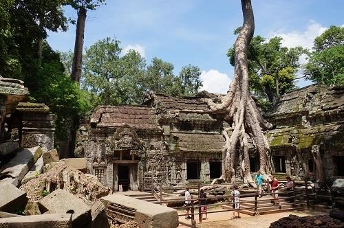 カンボジア④20170618(タ プローム) (10)
