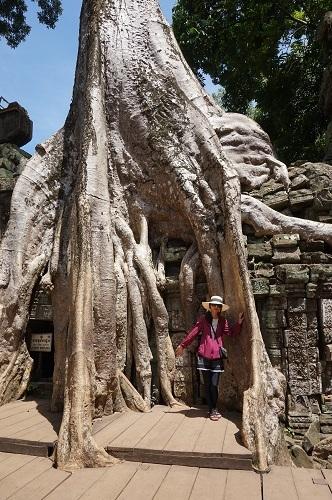 カンボジア④20170618(タ プローム) (23)