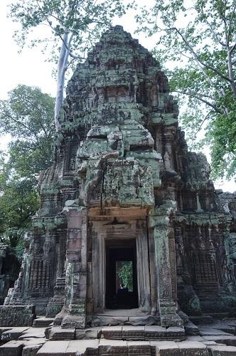 カンボジア④20170618(タ プローム) (45)