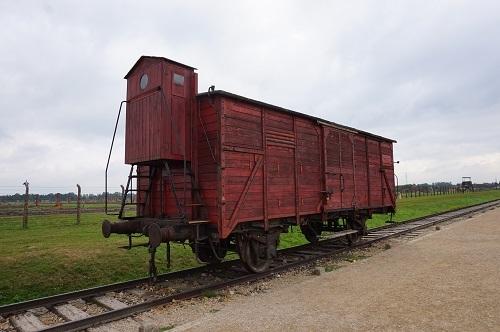 アウシュビッツ (37)ビルケナウ収容所貨車