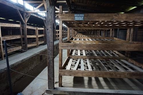 アウシュビッツ (47)ビルケナウ収容所・隔離収容所