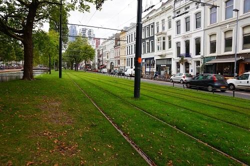 ロッテルダム20170907 (40)