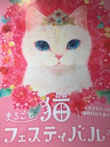 猫フェス20172