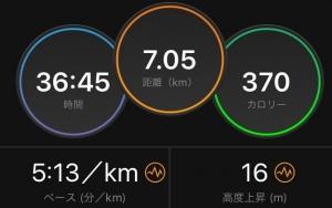 7km.jpg