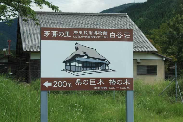 170726suiyou_biwako30.jpg