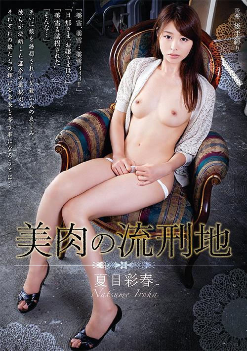 美肉の流刑地 夏目彩春