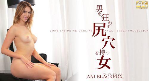 アニ・ブラックフォックス - 男を狂わす尻穴を持つ女 ANI BLACKFOX 12