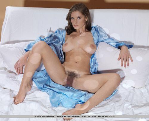 MetArt - Alina H - DAME