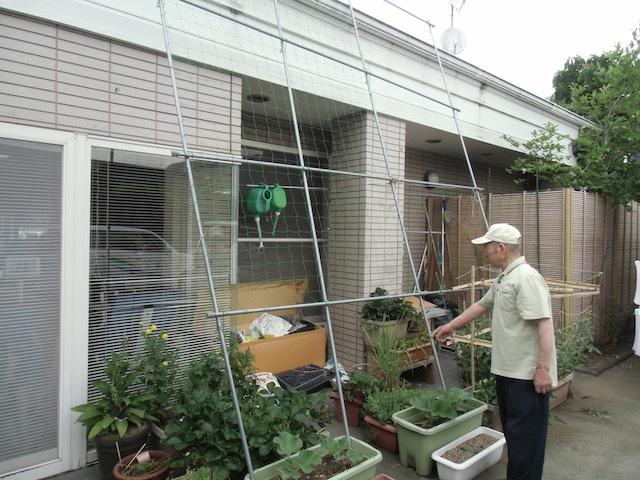 ひょうたん棚作り(3)