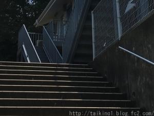 S061010