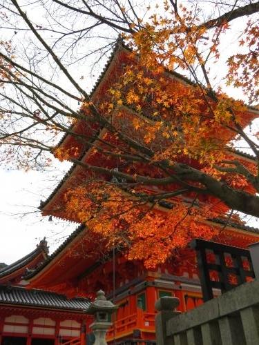 2016 11 29 清水寺