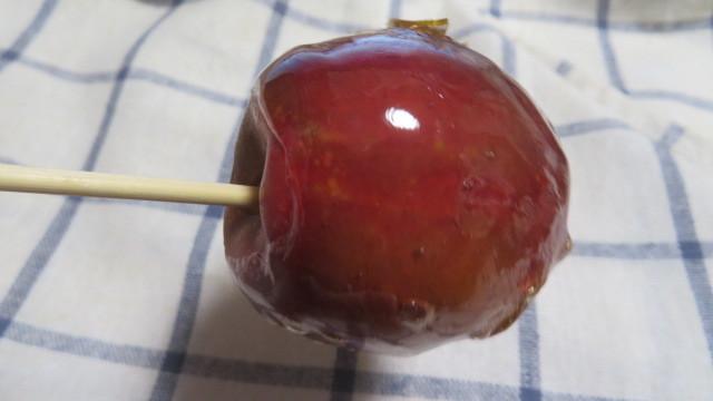 2017 3 28 着物用の布